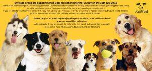 dogtrust