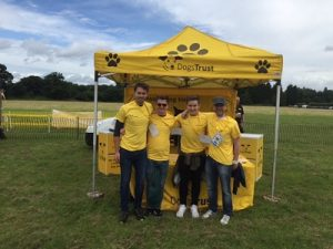 volunteering at dogs trust