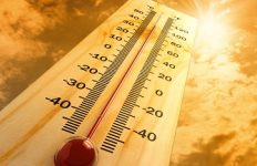 keep cool in the summer top tips