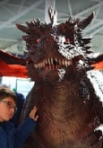 hire a real dragon for kids parties